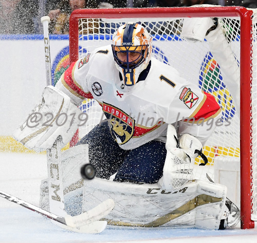 Roberto Luongo Elite Prospects