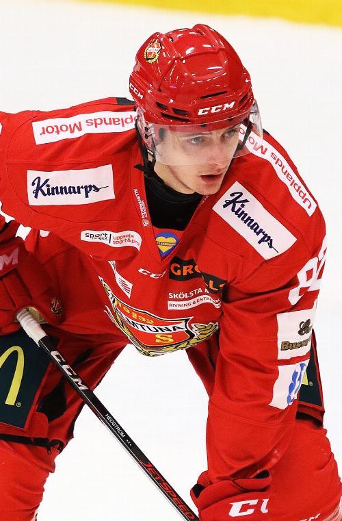 Ludvig Hedström
