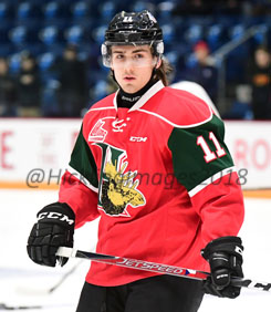 Image result for zadina halifax